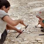Fossilien suchen im Altmühltal – mit Dinosaurier